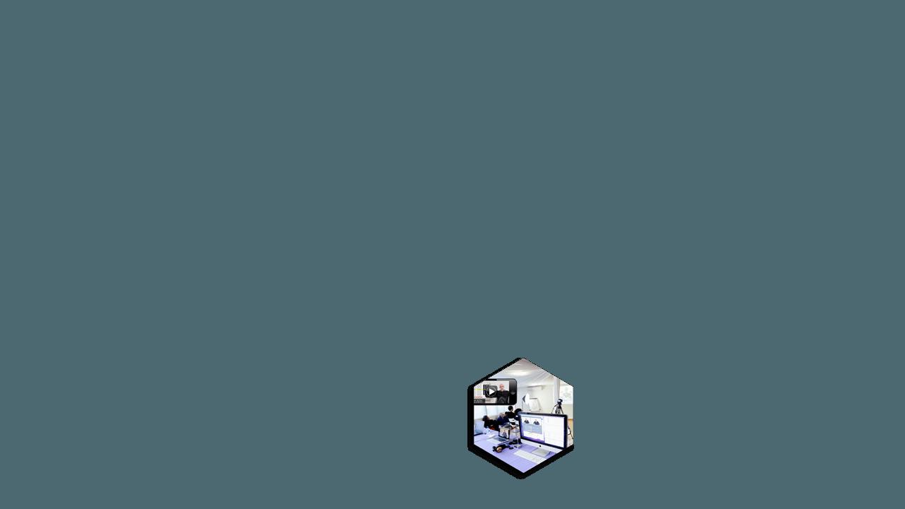 organigrama2-STREAMING